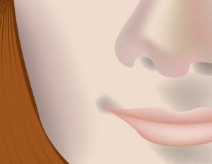 モナリザ(ベクタ画像)の口元