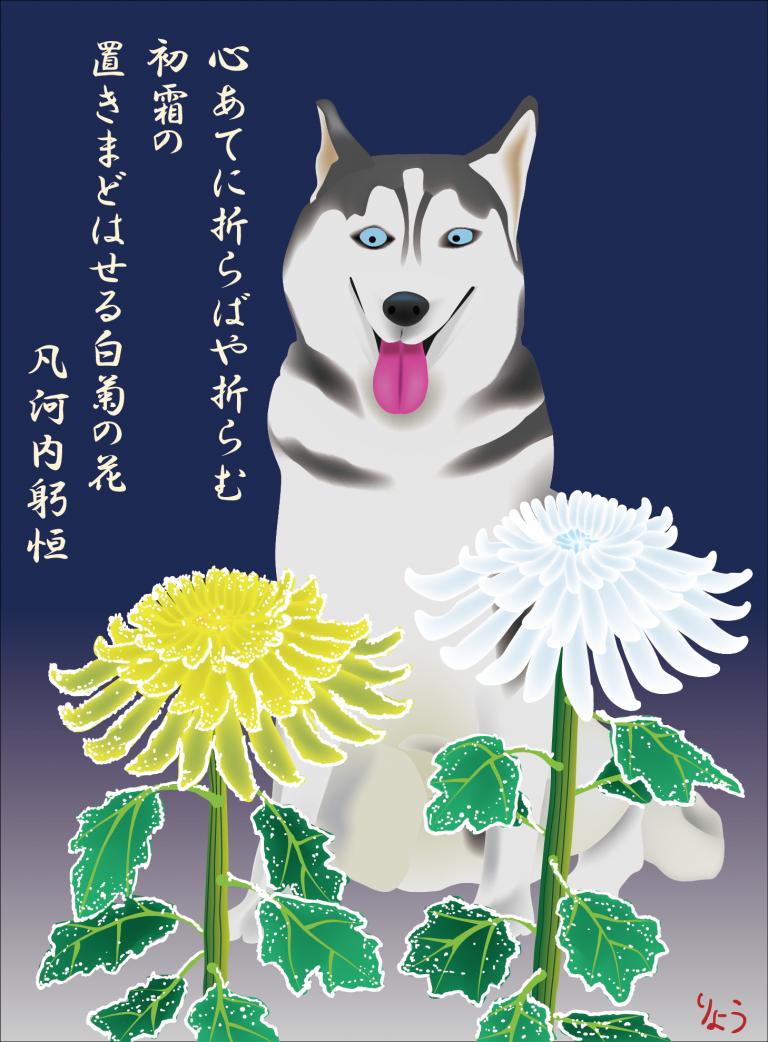 シベリアンハスキー:「心あてに折らばや折らむ初霜の 置きまどはせる白菊の花」のストーリー
