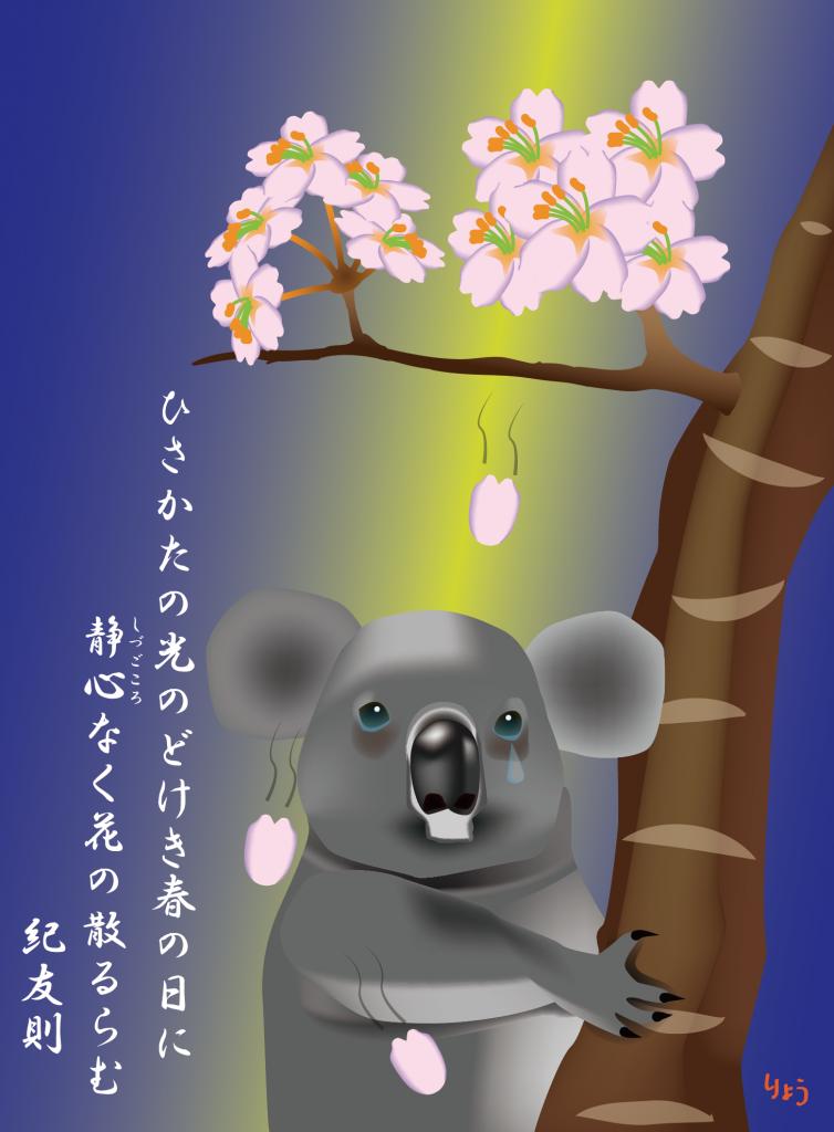 コアラ 桜「ひさかたの光のどけき春の日に 静心なく花の散るらむ」のストーリー